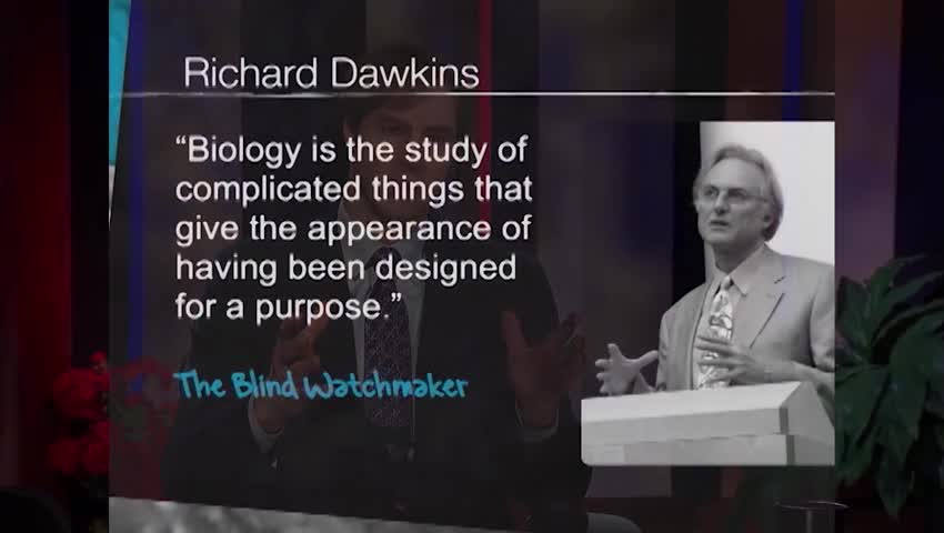 What are the implications of the intelligent design theory?