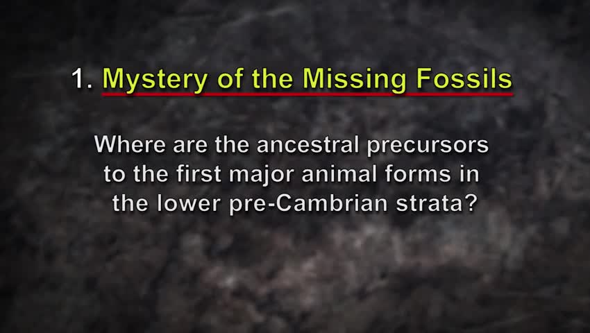 What two mysteries face evolutionary scientists in light of the Burgess Shale fossils?