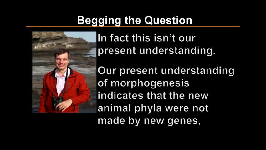 What alternate theories have been proposed to explain the origin of information?